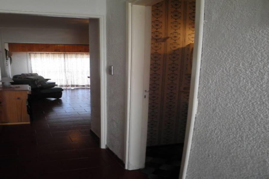 Santa Teresita, Buenos Aires, Argentina, 1 Dormitorio Bedrooms, ,1 BañoBathrooms,Apartamentos,Temporario,36,1,41077
