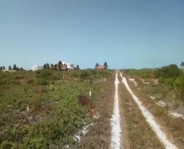 Chicxulub Pueblo,Yucatán,Mexico,Lotes-Terrenos,4561