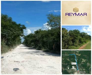 Mérida,Yucatán,Mexico,Lotes-Terrenos,4566