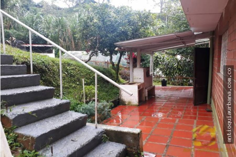 Envigado, Antioquia, Colombia, 5 Bedrooms Bedrooms, ,3 BathroomsBathrooms,Casas,Venta,CALLE 39D SUR,41246