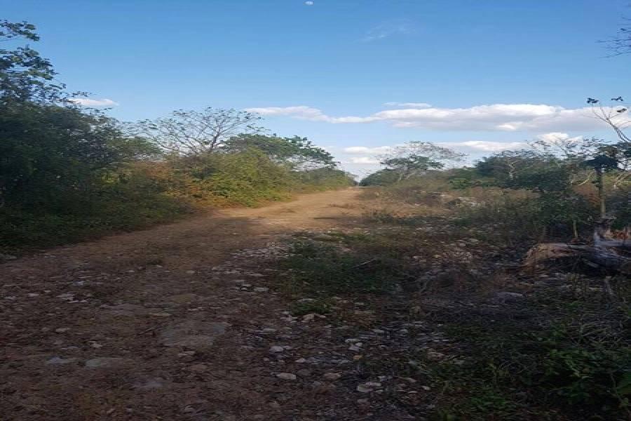 Mérida,Yucatán,Mexico,Lotes-Terrenos,4575
