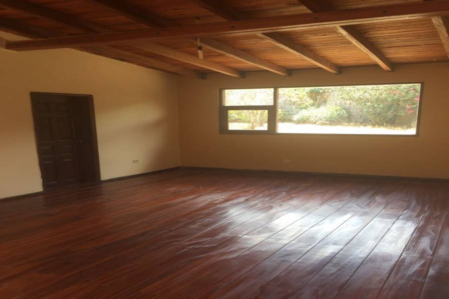 Quito, PICHINCHA, Ecuador, 3 Bedrooms Bedrooms, ,3 BathroomsBathrooms,Casas,Venta,41382
