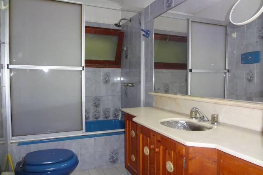Punta del este, Maldonado, Uruguay, 3 Bedrooms Bedrooms, ,3 BathroomsBathrooms,Casas,Temporario,41438