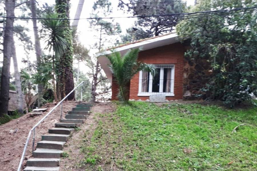Punta del Este, Maldonado, Uruguay, 2 Bedrooms Bedrooms, ,2 BathroomsBathrooms,Casas,Temporario,41458