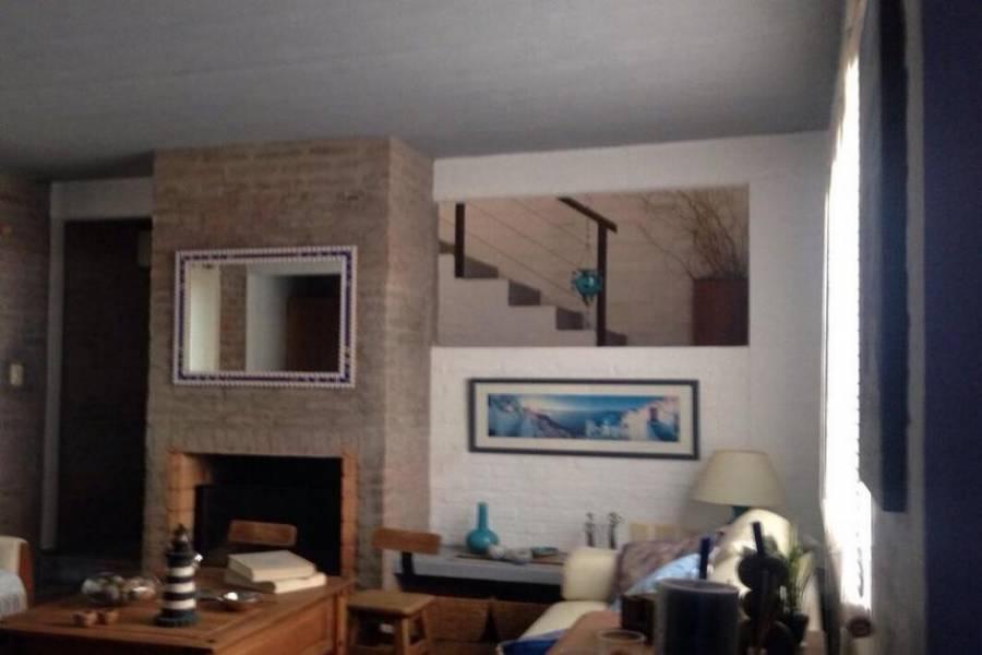 punta del este, Maldonado, Uruguay, ,Casas,Temporario,41469