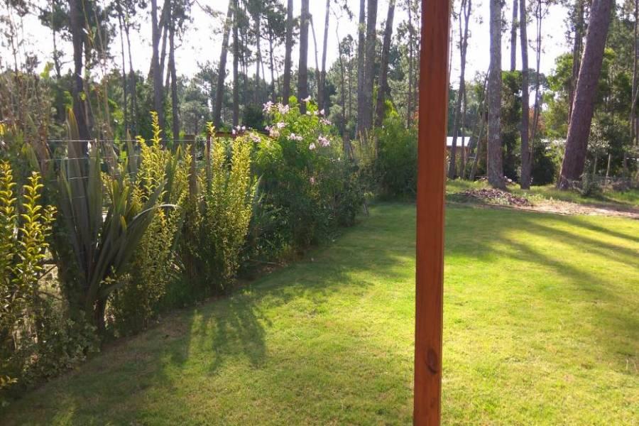 Punta del Este, Maldonado, Uruguay, 3 Bedrooms Bedrooms, ,2 BathroomsBathrooms,Casas,Venta,41702