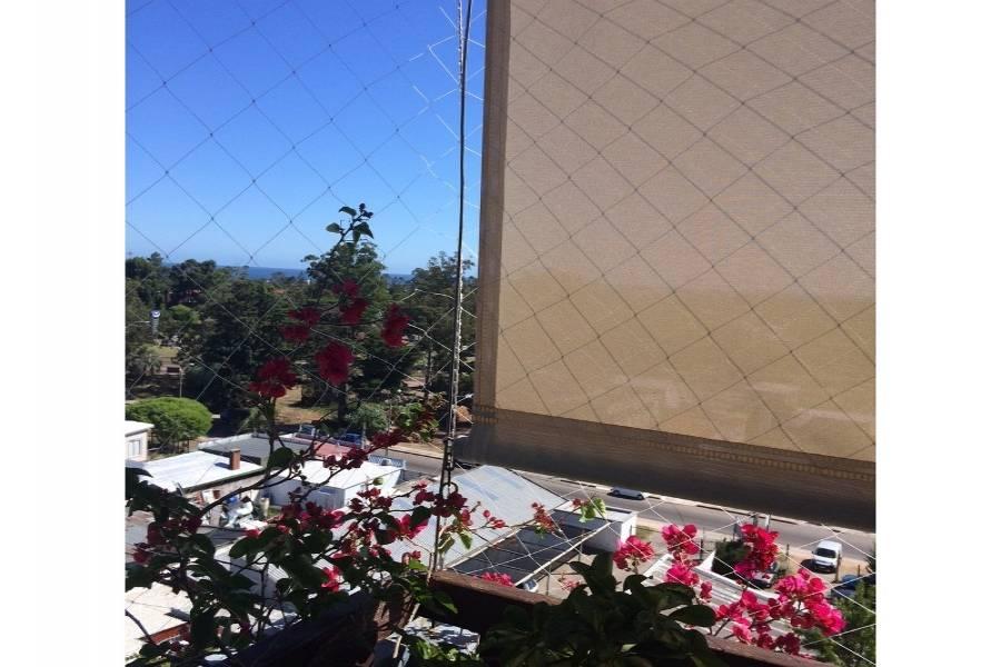 Maldonado, Uruguay, 2 Bedrooms Bedrooms, ,2 BathroomsBathrooms,Apartamentos,Venta,41991