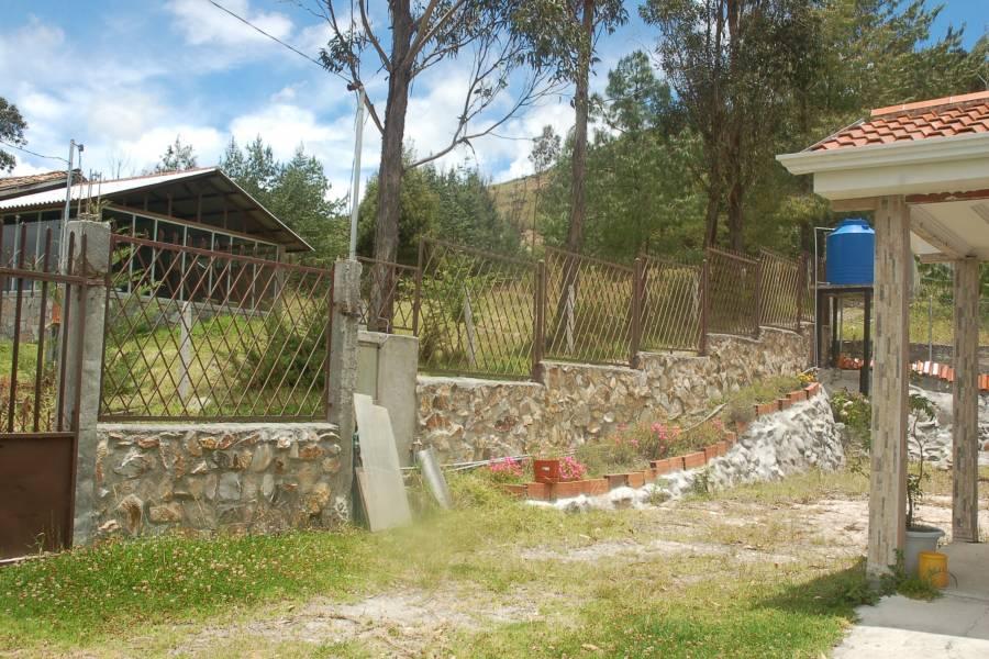 Paute, AZUAY, Ecuador, 4 Bedrooms Bedrooms, ,4 BathroomsBathrooms,Fincas-Villas,Venta,1,42002