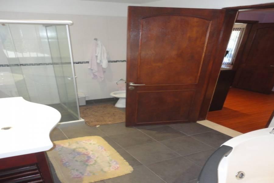Punta del Este, Maldonado, Uruguay, 6 Bedrooms Bedrooms, ,5 BathroomsBathrooms,Casas,Venta,42059