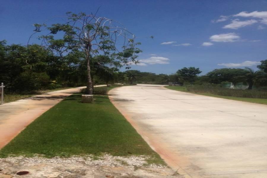 Mérida,Yucatán,Mexico,Lotes-Terrenos,4658