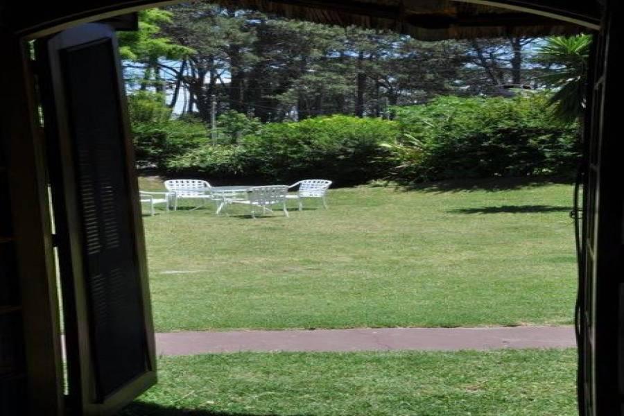 Punta del Este, Maldonado, Uruguay, 4 Bedrooms Bedrooms, ,3 BathroomsBathrooms,Apartamentos,Venta,42102