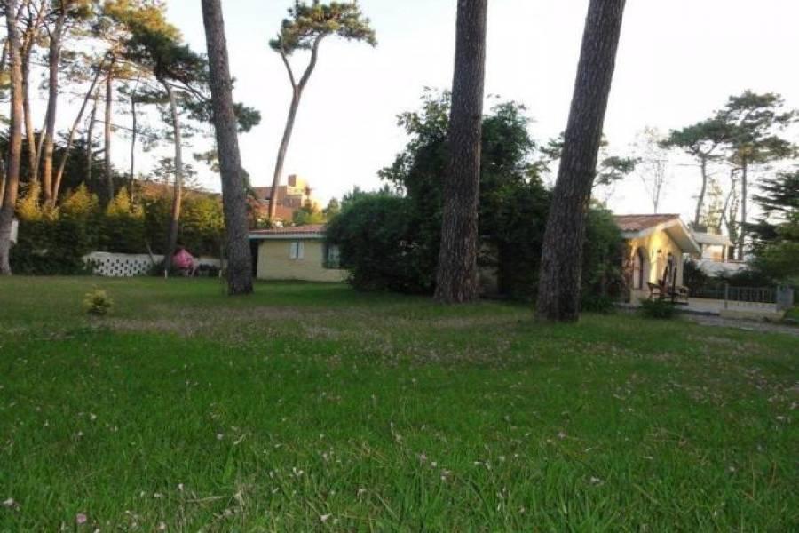 Punta del Este, Maldonado, Uruguay, 3 Bedrooms Bedrooms, ,2 BathroomsBathrooms,Casas,Venta,42186