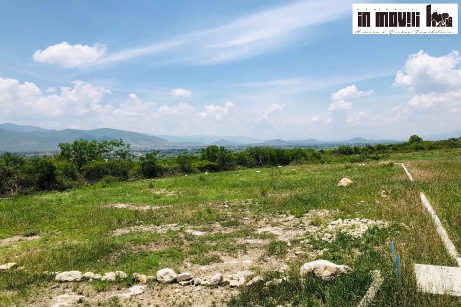 santa maria del tule, Oaxaca, Mexico, ,Lotes-Terrenos,Venta,camino a rojas de cucuhtemoc,42366