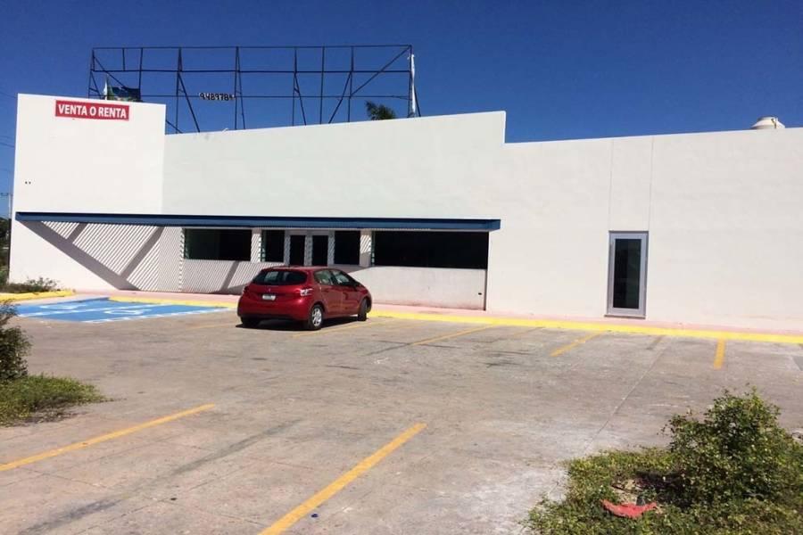 Mérida,Yucatán,Mexico,Local comercial,4688