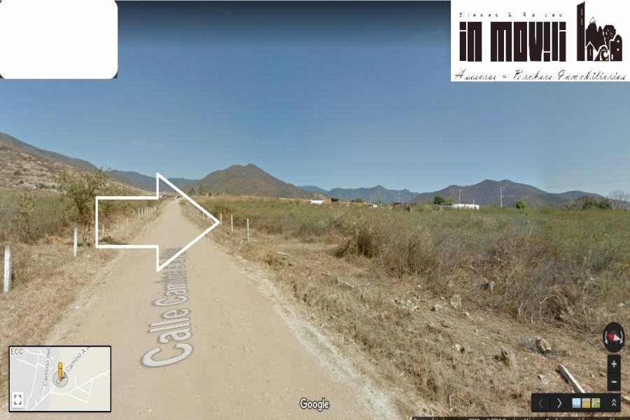 tlalixtac de cabrera, Oaxaca, Mexico, ,Lotes-Terrenos,Venta,CAMINO A LA PALMA S/N LA TRINIDAD 5A SECC TLALIXTA,42582