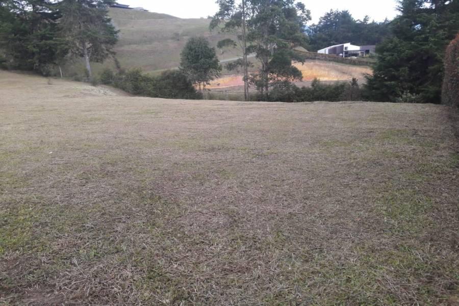 SAN ANTONIO DE PEREIRA, Antioquia, Colombia, ,Lotes-terrenos comercial,Venta,42595