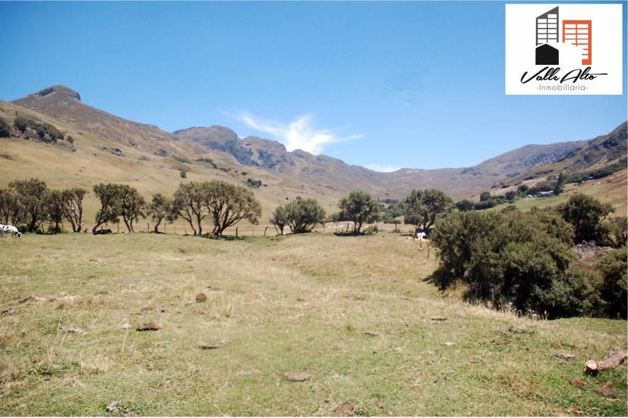 Cuenca, AZUAY, Ecuador, ,Fincas,Venta,42794