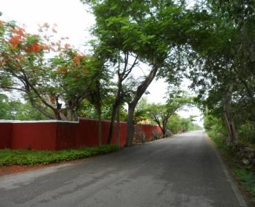 Mérida,Yucatán,Mexico,3 Bedrooms Bedrooms,9 BathroomsBathrooms,Casas,4811