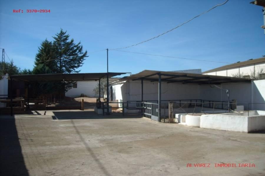 Campillos,Málaga,España,1 BañoBathrooms,Fincas-Villas,4855
