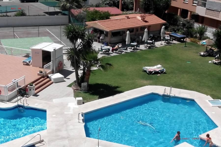 Benalmádena Costa,Málaga,España,1 BañoBathrooms,Estudios,4975