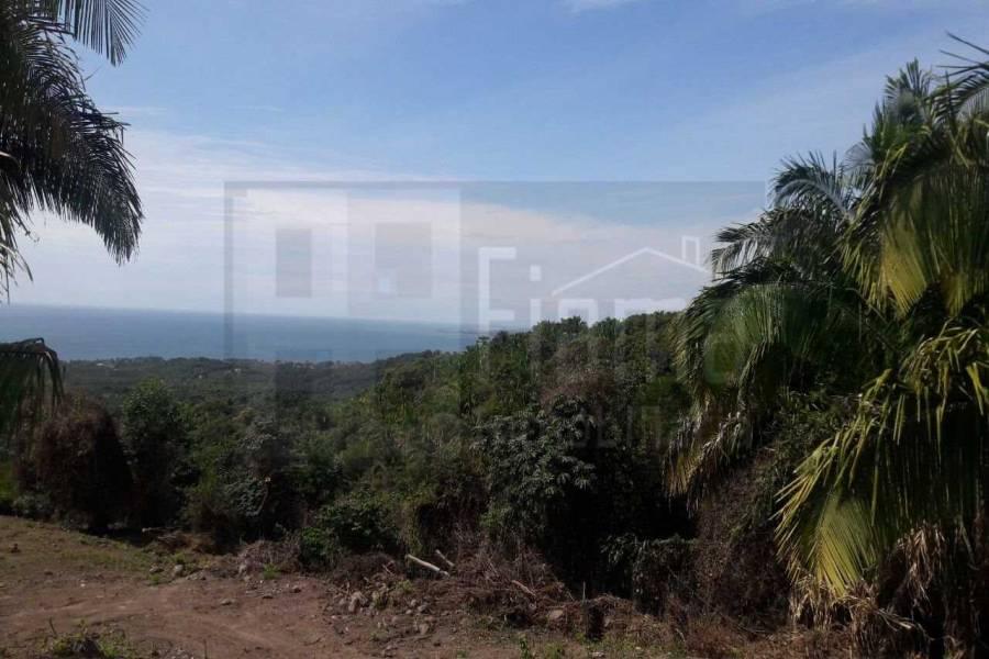 San Blas,Nayarit,Mexico,Lotes-terrenos comercial,5232