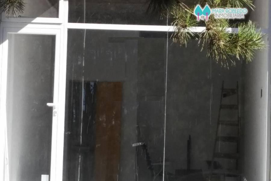 Valeria del Mar,Buenos Aires,Argentina,1 Habitación Rooms,1 BañoBathrooms,Locales,ESPORA 1402,5615