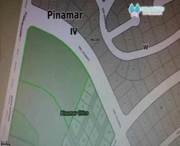 Pinamar,Buenos Aires,Argentina,Lotes-Terrenos,PINAMAR CHICO,5835