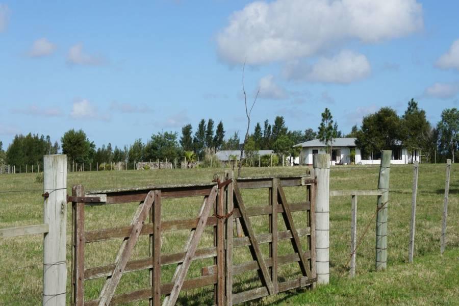 Maldonado,Uruguay,4 Bedrooms Bedrooms,4 BathroomsBathrooms,Chacras-Quintas,6085