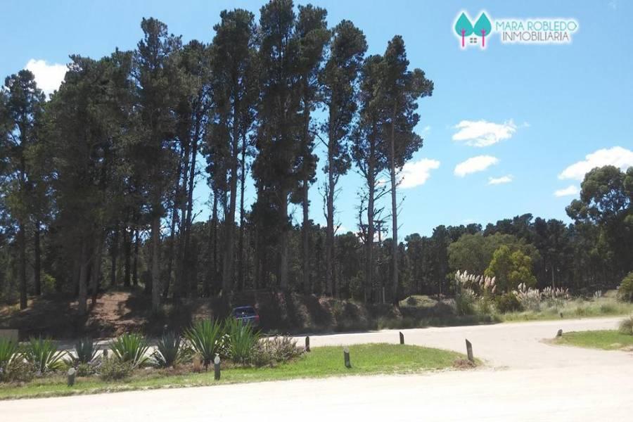 Costa Esmeralda,Buenos Aires,Argentina,Lotes-Terrenos,SENDEROS III LOTE 247,6133