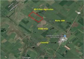 San Nicolas de los Arroyos,Buenos Aires,Argentina,Campos,6439