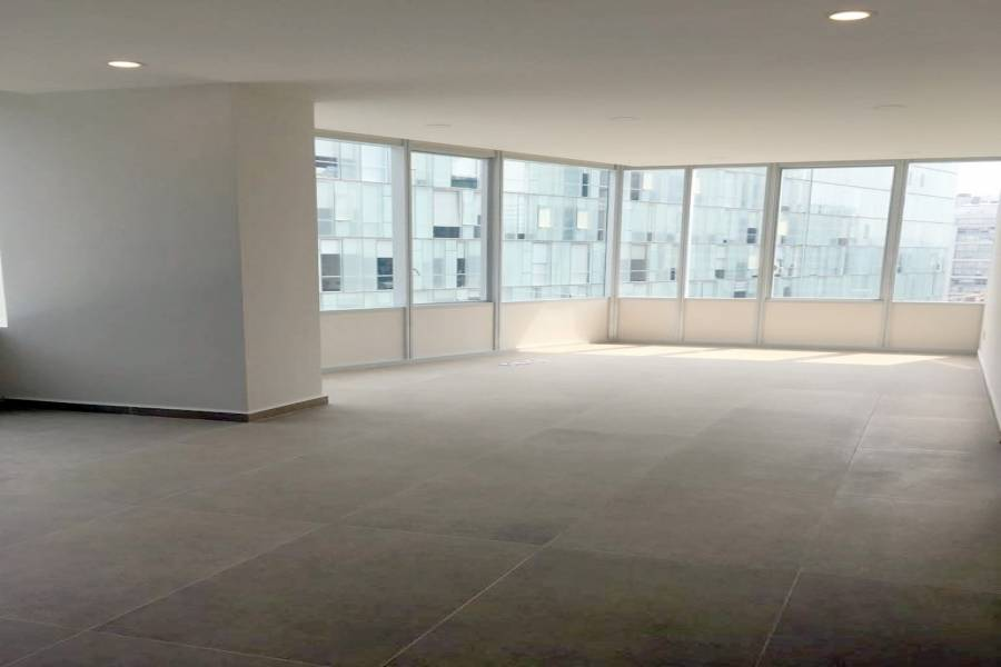 Miguel Hidalgo,Distrito Federal,Mexico,4 BathroomsBathrooms,Apartamentos,Lago Zurich,6536