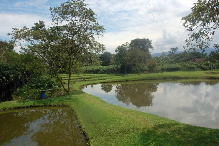 SUCUA,MORONA SANTIAGO,Ecuador,10 Bedrooms Bedrooms,10 BathroomsBathrooms,Hoteles/Hosterias/Residencias,Via sucua Macas,2,6893