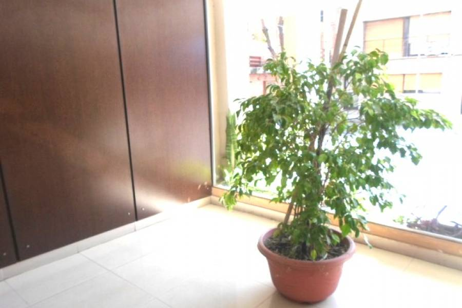 Caballito,Capital Federal,Argentina,2 Bedrooms Bedrooms,1 BañoBathrooms,Apartamentos,FRANCISCO SEGUI,7057