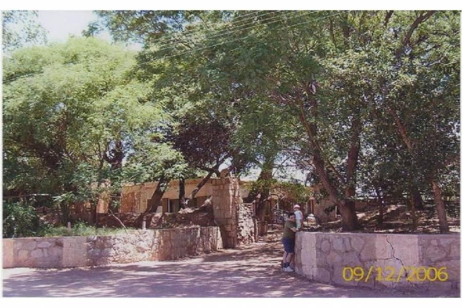Tinogasta,Catamarca,Campos,ruta 60,1645