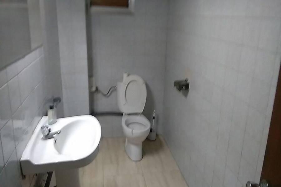 San Vicente del Raspeig,Alicante,España,2 BathroomsBathrooms,Galpones-Tinglados-Naves,7987