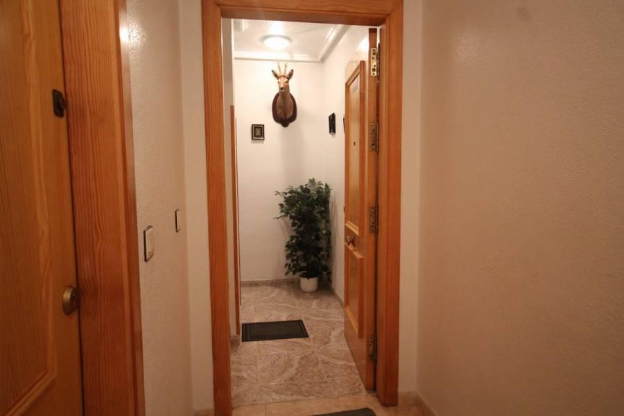 Torrevieja,Alicante,España,2 Bedrooms Bedrooms,1 BañoBathrooms,Pisos,8408
