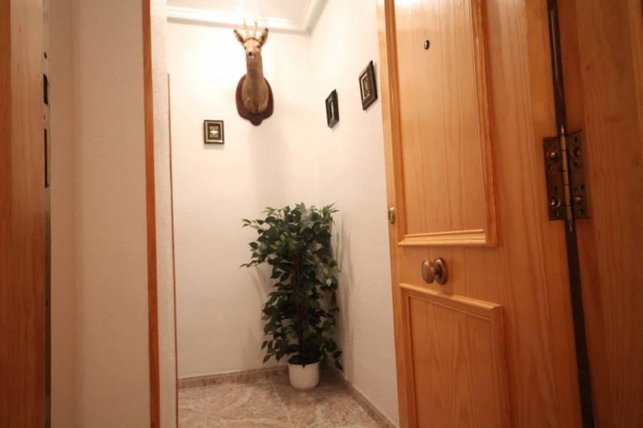 Torrevieja,Alicante,España,2 Bedrooms Bedrooms,1 BañoBathrooms,Pisos,8601
