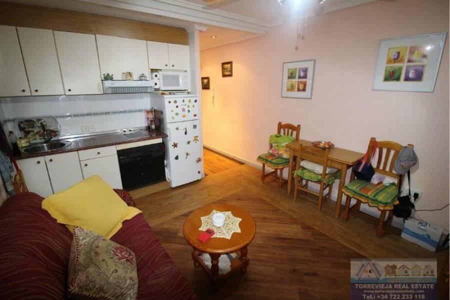 Torrevieja,Alicante,España,1 Dormitorio Bedrooms,1 BañoBathrooms,Pisos,9500
